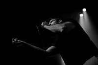 20150328 Baboon at Bomb Factory - JPG HiRes -3811